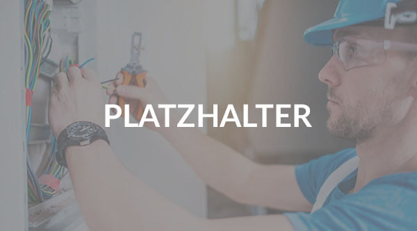 Projekt- und Werkstattleiter/in Schaltanlagenbau BP
